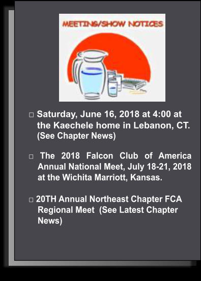 □ Saturday, June 16, 2018 at 4:00 at the Kaechele home in Lebanon, CT.   (See Chapter News)   □ The 2018 Falcon Club of America Annual National Meet, July 18-21, 2018 at the Wichita Marriott, Kansas.  □ 20TH Annual Northeast Chapter FCA  Regional Meet  (See Latest Chapter News)